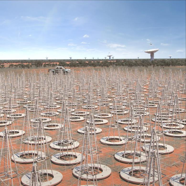SKA Low Frequency Aperture Array. Crediti: SKA Organisation